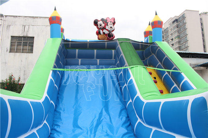 Joyful Fun Made Inflatable Castle Slide for the Park Owner in New Zealand