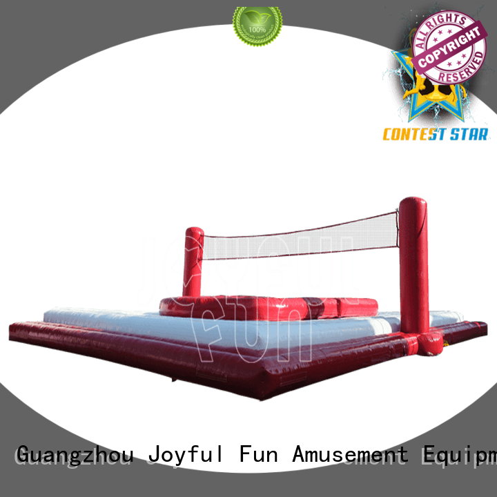 Joyful Fun sports inflatable ball sport supplier for children